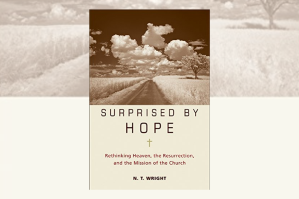 Surprised by Hope: NT Wright
